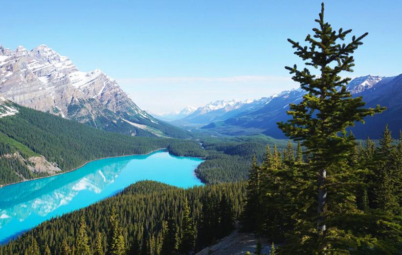 نمایی از طبیعت کانادا